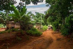 Cuba sitios de interés Excursión en Viñales