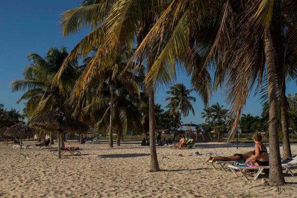 Cuba sites of interest Playa Giron beach with palm
