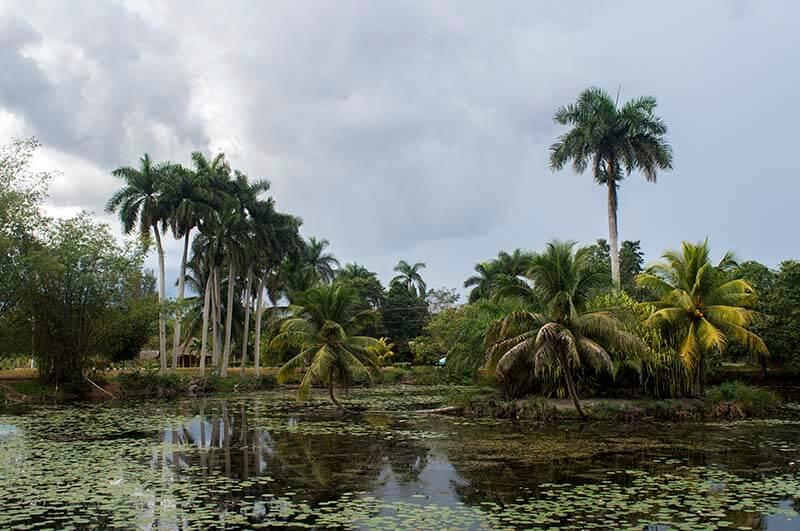 Cuba bouwstenen Laguna del Tesoro - Guama