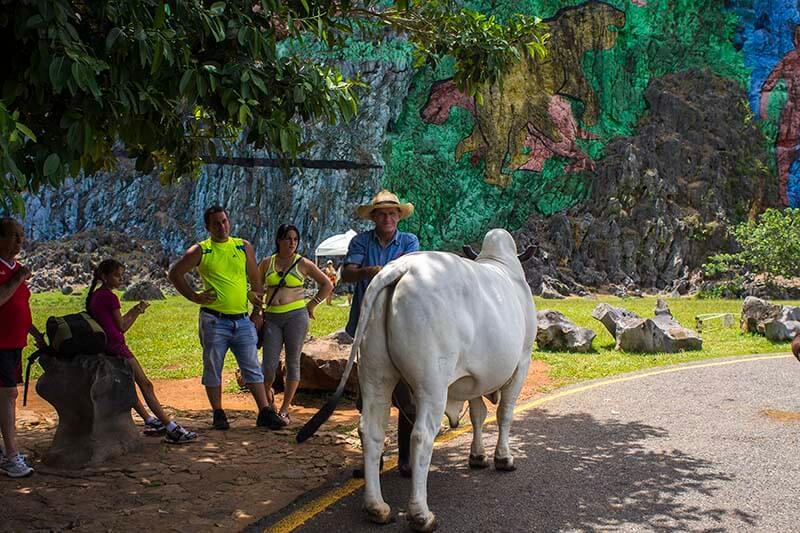 Cuba viajes circuito La isla de tus sueños Vinales 5
