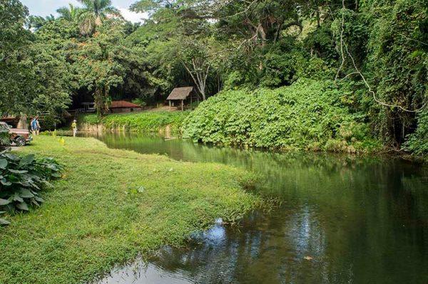Cuba bezienswaardigheden Soroa - Las Terrazas rivier
