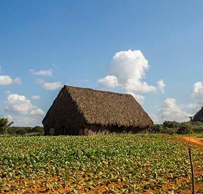 Cuba rondreis Het Eiland van je dromen Vinales