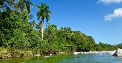 Cuba rondreis Het andere deel van Cuba Baracoa rivier met palm