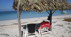 Cuba rondreis het eiland van je dromen Cayo Jutias strand