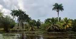 Cuba rondreis Cuba met kinderen Laguna del Tesoro