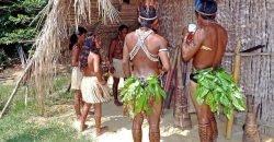 amazon-indians-69589_640-min